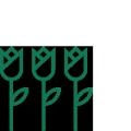 verde_pubblico