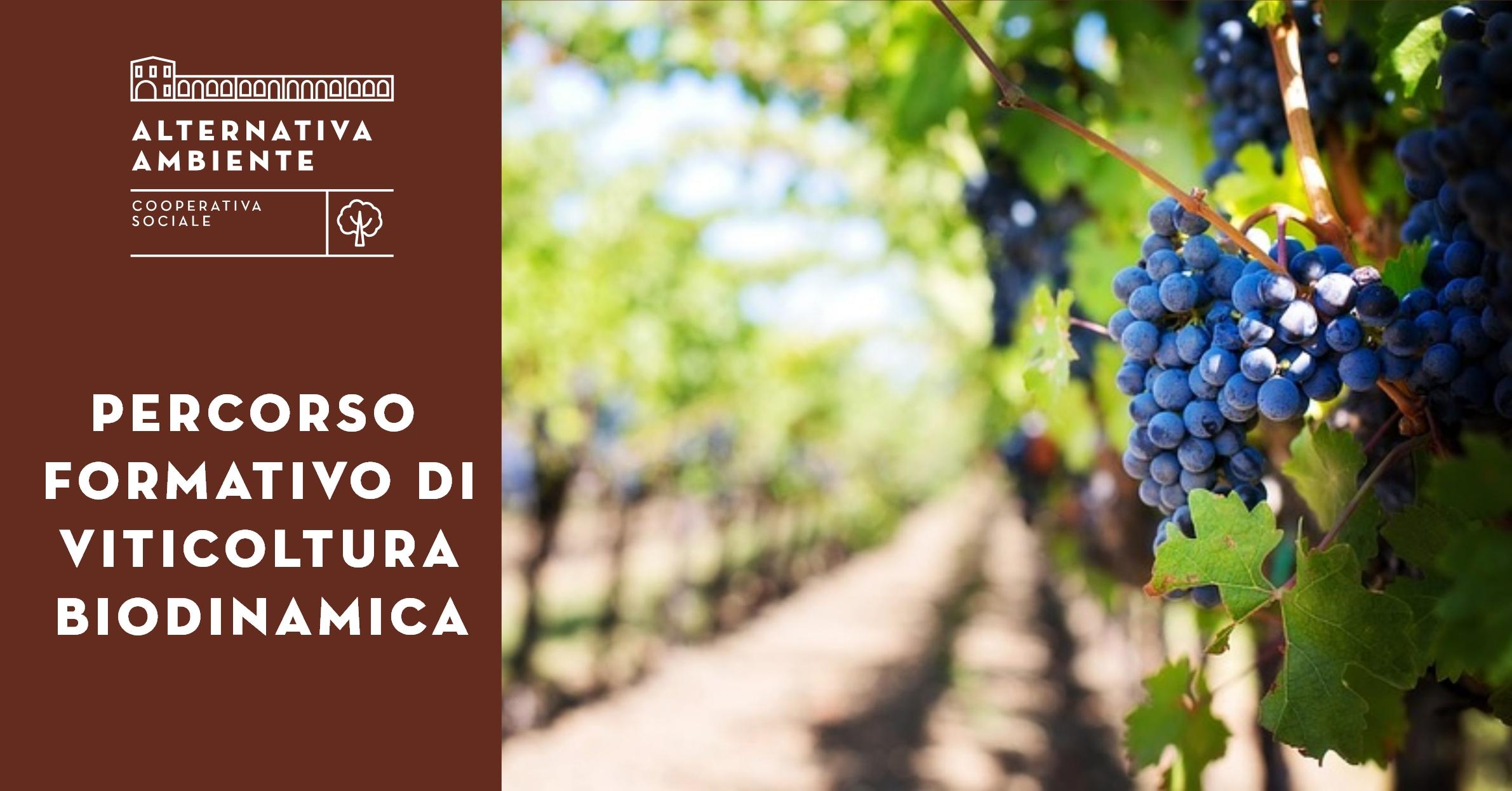 ViticolturaBiodinamica_Social