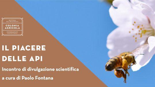 Piacere delle api Social