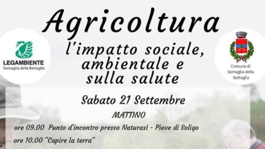 Agricoltura: impatto sociale, ambiente e salute