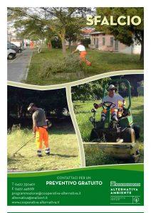 Servizi Verde 3